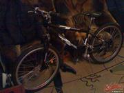 Горный велосипед Starter Bolder