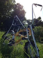 Эксклюзивный кастом велосипед RASTABIKE
